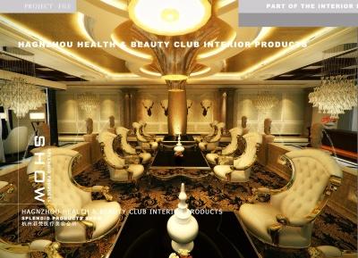杭州菲梵医疗美容会所室内设计(2013)